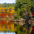 Fall Autumn Colors Water Reflection — Stock Photo #36372321