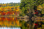 Fall Autumn Colors Water Reflection — Foto de Stock
