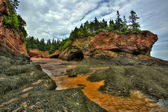 HDR St Martins Caves Seaweed Formation — Stock Photo