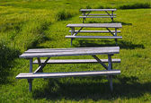 Three Picnic Wooden Tables Grass — Stock Photo