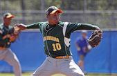Senior league baseball world series pitcher — Foto de Stock