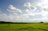 Rural of thailand — Stock Photo