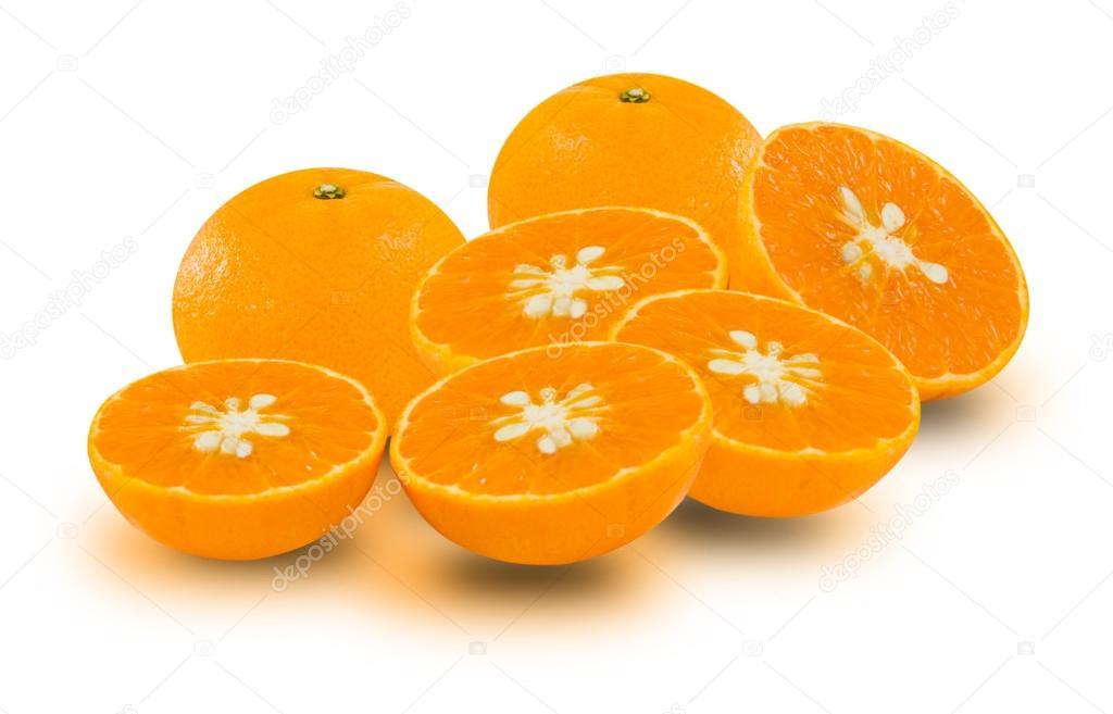 橘子树与水果种植园_乐乐简笔画