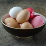 Many eggs — Stock Photo #35769067