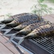 Stock Photo: Grilling fish