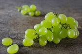 Zelené hrozny — Stock fotografie