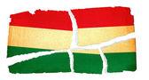 Шероховатый флаг - Венгрия — Стоковое фото