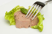 Canned tuna chunks — Stock Photo
