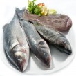 Choice of fresh raw fish — Stock Photo