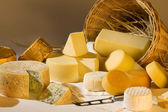 Different cheese products — Stock Photo