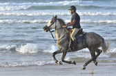 Rider galloping on horseback along the beach — Stockfoto