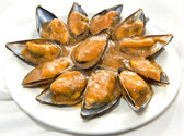 Steamed mussels in creamy tomato — Stock Photo