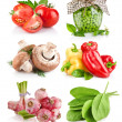 Set vegetable with green leaves — Stock Photo #19235591