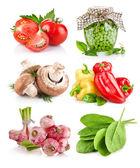 Conjunto vegetal com folhas verdes — Foto Stock