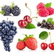 Set of fresh berry with green leaf — Stock Photo #19274733