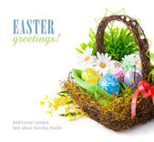 Easter eggs in basket with spring flowers — Stok fotoğraf