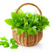 Royalty-Free Stock Photo: Green herbs in braided basket