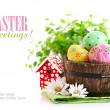 Easter eggs in the pot with green grass - Stock Photo