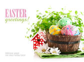 Easter eggs in the pot with green grass — Stock Photo