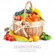 Autumnal harvest vegetables and fruits in basket — Stock Photo #29826495