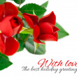 Red rose with green leaves — Stock Photo #32422961