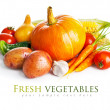 Autumnal harvest fresh vegetables — Stock Photo