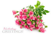 Bouquet pink rose with green leaf — Stock Photo