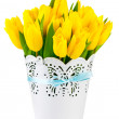 Stock Photo: Yellow tulips in bucket