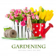 Roses and tulips with garden tools — Stock Photo