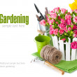 Pink roses and tulips with garden tools — Stock Photo #40847837