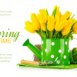 Spring flowers in watering can with garden tools — Stock Photo #44756587