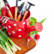 Watering can with garden tools and fresh vegetables — Stock Photo