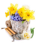 Tool for floriculture and flower in wicker basket — Stock Photo