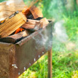 Burning firewood in brazier on green lawn — Stock Photo #46230801