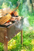 Burning firewood in brazier on green  lawn — Stock Photo