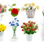 Set bunch of garden flowers — Stock Photo #48238307