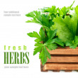 Fresh herbs in wooden box — Stock Photo #49376425