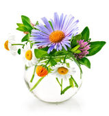 Bunch summery flowers in glass vase — Stock Photo
