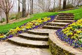 Escalones que conducen al jardín — Foto de Stock