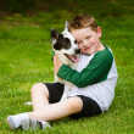 Child lovingly embraces his pet dog, a blue heeler — Stock Photo