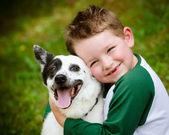 Bambino con amore abbraccia il suo cane, un heeler blu — Foto Stock