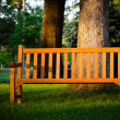 Park bench highlighted by late afternoon sun in tranquil setting — Stock Photo
