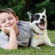 Child playing with his pet dog, blue heeler — Stock Photo #26853893