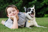 Child playing with his pet dog, a blue heeler — Stock Photo