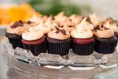 Mini cupcakes in glass tray on buffet — Stock Photo