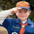 Постер, плакат: Cub Scout giving Boy Scout salute