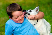 Happy boy being licked by his pet dog — Stock Photo