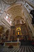 Moskén-katedralen i cordoba — Stockfoto