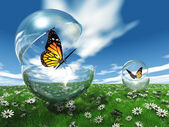Butterfly in a bubble in the meadow — Stock Photo