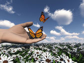 The beautiful butterfly in the hand — Foto Stock